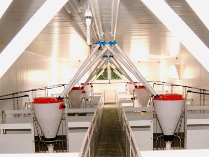 granja modular engorde accesorios granjas polyarmados lleida