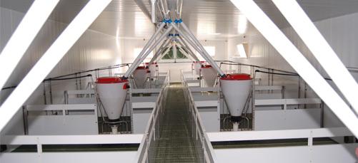 modulos ganaderos modulares granjas polyarmados lleida